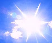 Sun Thumb